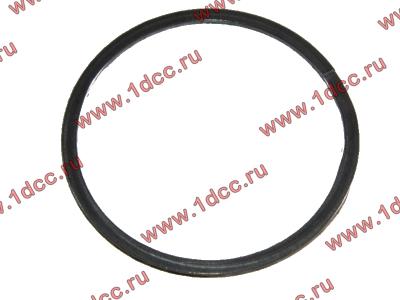 Кольцо уплотнительное выпускного коллектора H2 HOWO (ХОВО) VG260110162 фото 1 Новокузнецк