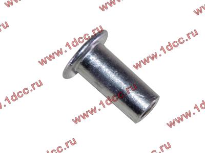 Заклепка алюминиевая 10х24 H2/H3 HOWO (ХОВО) 189000340068 AL фото 1 Новокузнецк