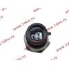 Датчик давления масла H3 HOWO (ХОВО) VG1540090035/1 фото 2 Новокузнецк