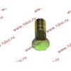 Болт пустотелый М10х1,0 (штуцер топливный) H HOWO (ХОВО) 81500070054 фото 3 Новокузнецк